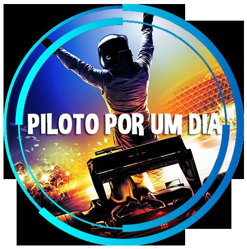 Piloto Por Um Dia